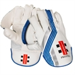 Prestige Wicket Keeping Gloves  (19/20)
