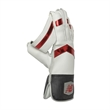 TC 860 Wicket-Keeping Gloves (20/21)